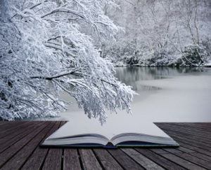 snow covered open book in winter landscape