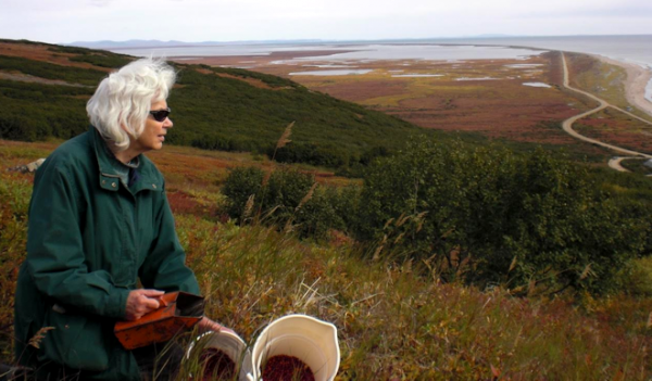 Alaskan author Nancy Mendenhall berry picking